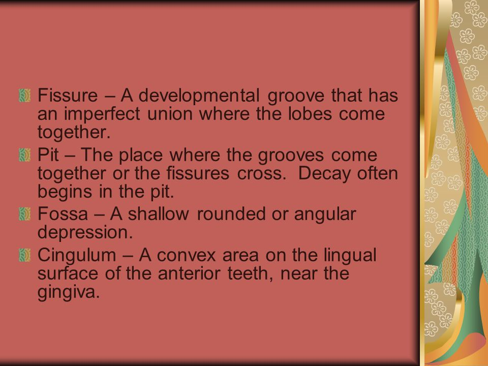 Fissure – A developmental groove that has an imperfect union where the lobes come together.