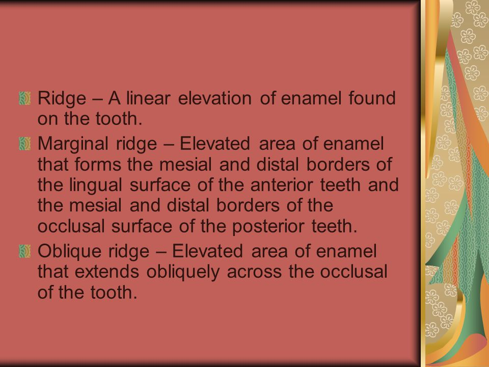 Ridge – A linear elevation of enamel found on the tooth.