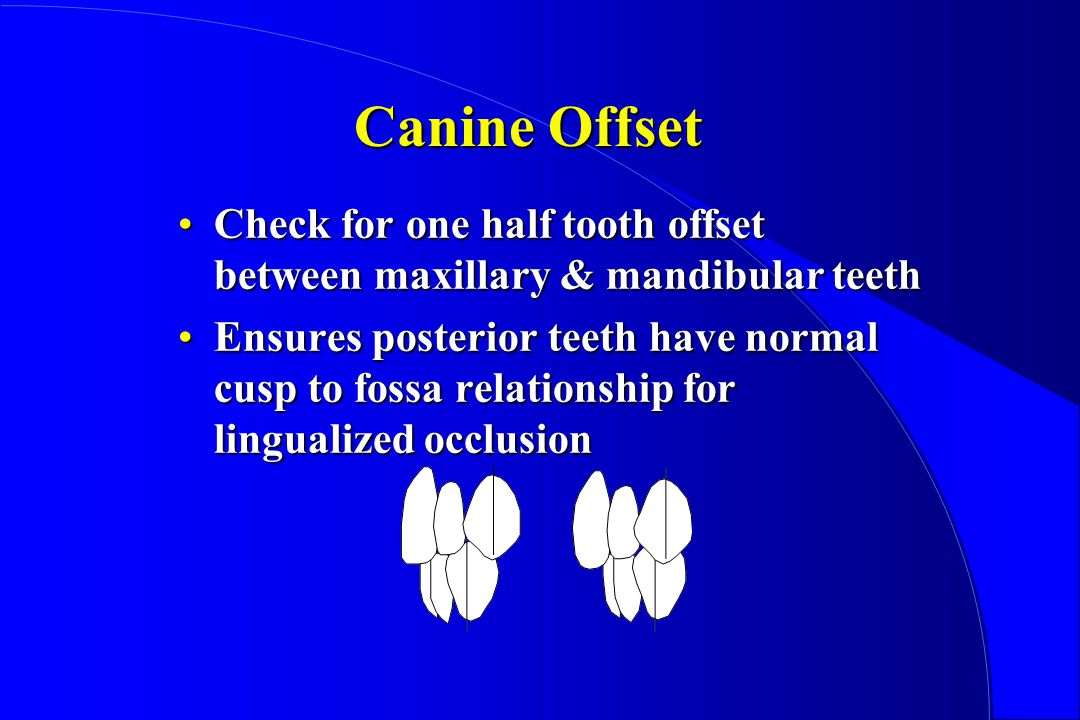 Canine Offset Check for one half tooth offset between maxillary & mandibular teeth.