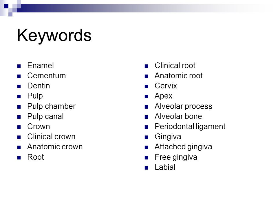 Keywords Enamel Cementum Dentin Pulp Pulp chamber Pulp canal Crown
