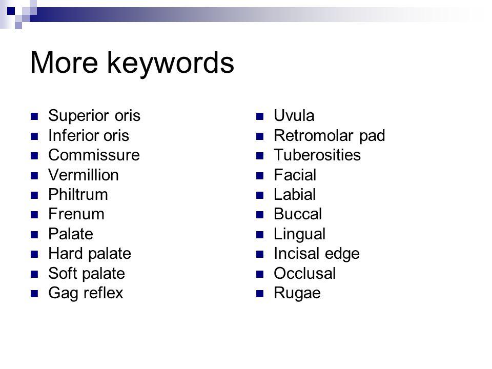 More keywords Superior oris Inferior oris Commissure Vermillion