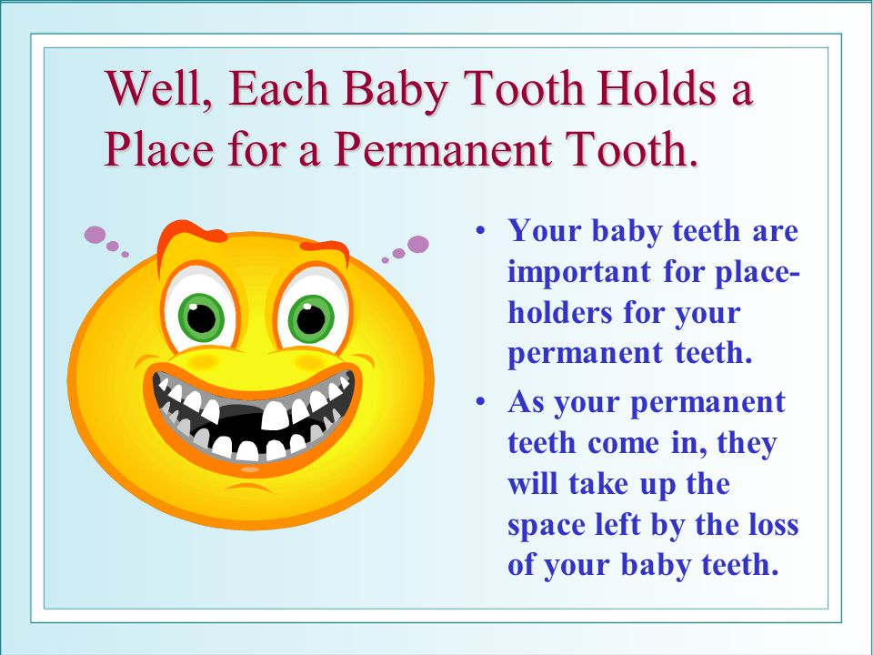 Well, Each Baby Tooth Holds a Place for a Permanent Tooth.