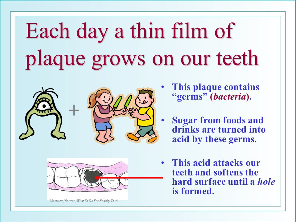 Each day a thin film of plaque grows on our teeth