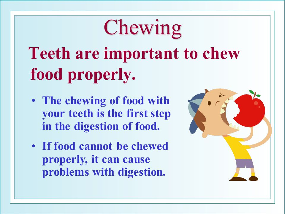 Chewing Teeth are important to chew food properly.