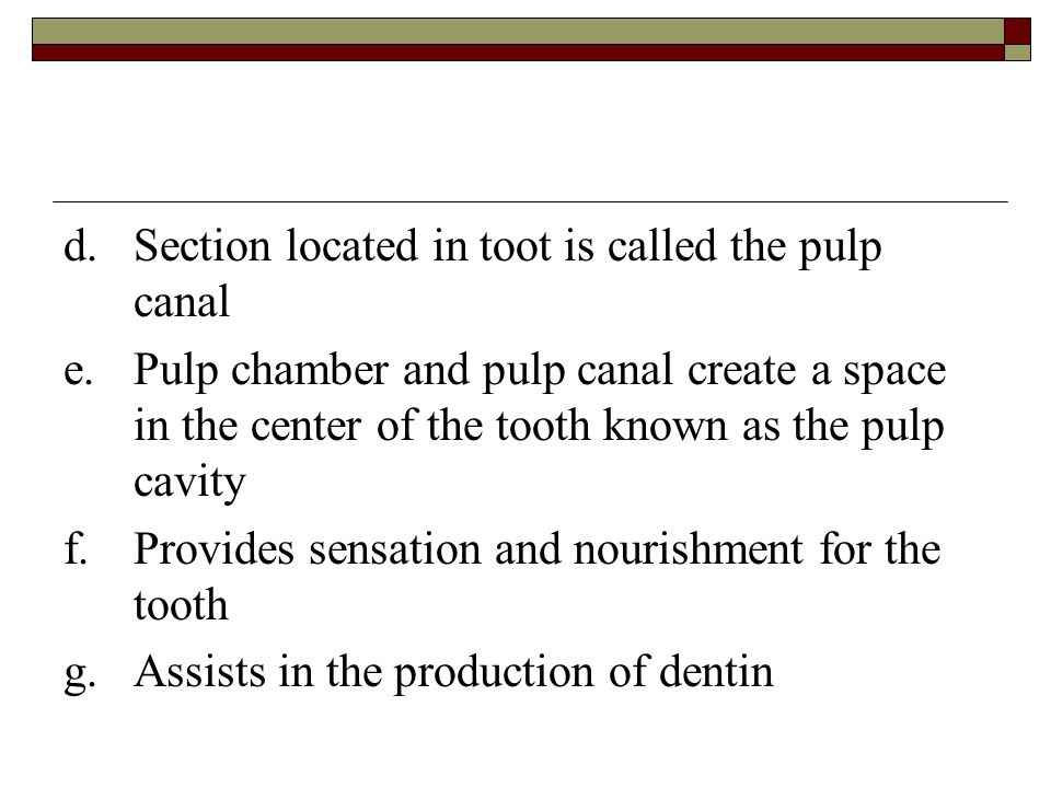 d. Section located in toot is called the pulp canal