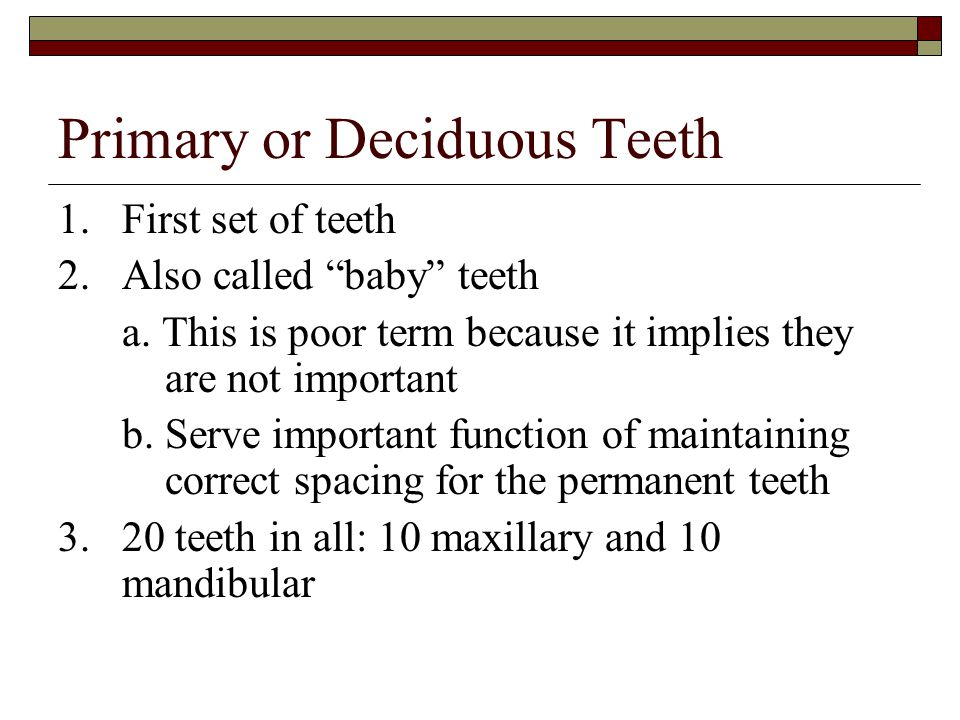 Primary or Deciduous Teeth