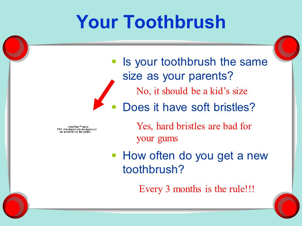 Your Toothbrush Is your toothbrush the same size as your parents