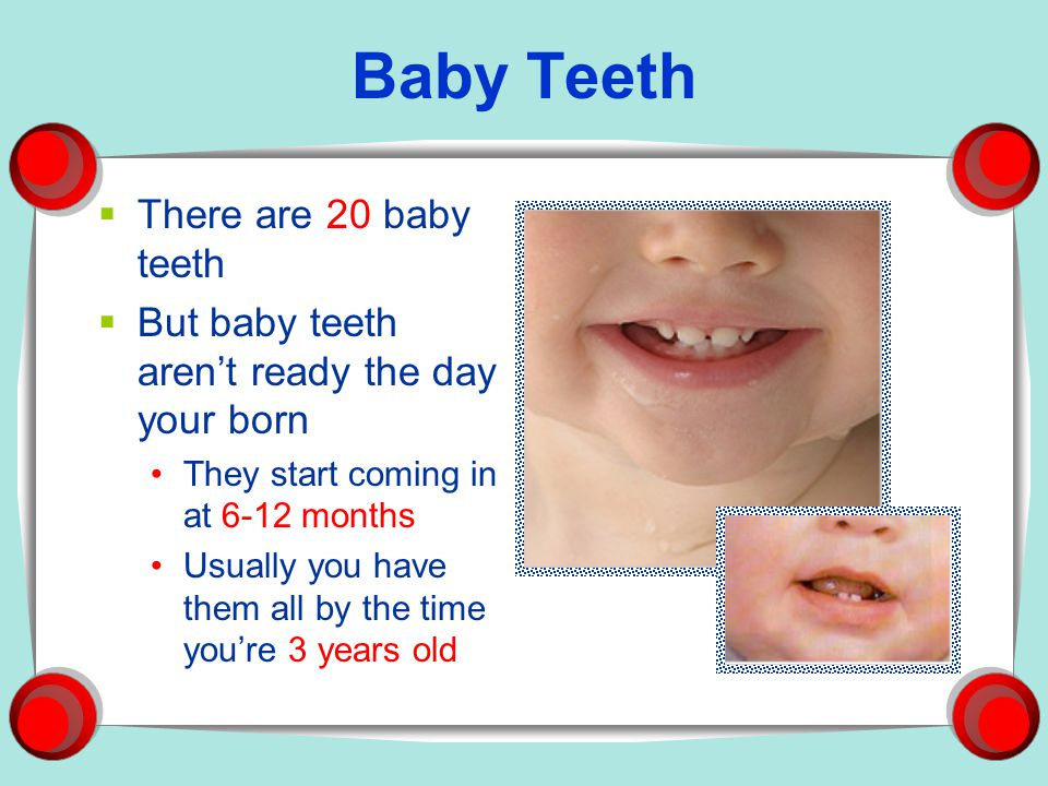 Baby Teeth There are 20 baby teeth
