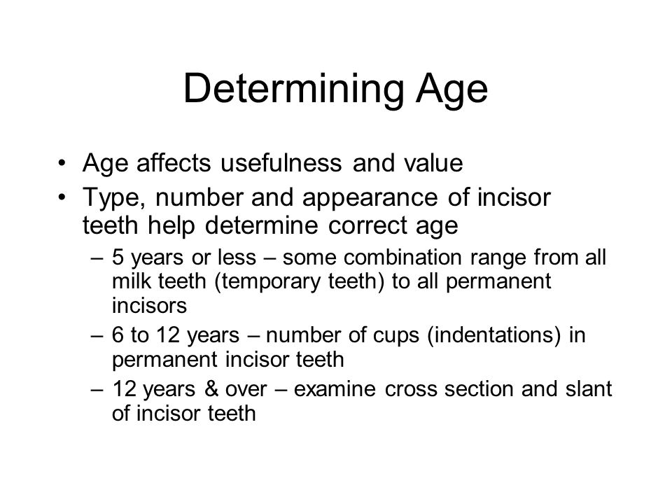 Determining Age Age affects usefulness and value