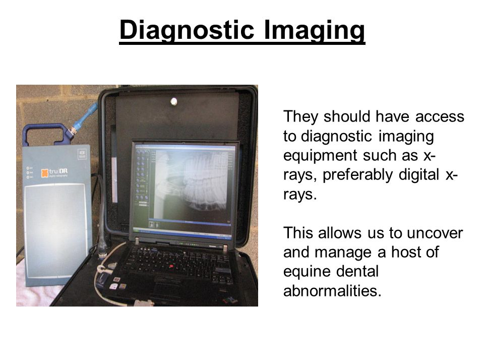 Diagnostic Imaging They should have access to diagnostic imaging equipment such as x-rays, preferably digital x-rays.