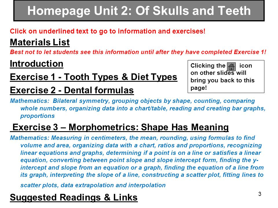 Homepage Unit 2: Of Skulls and Teeth
