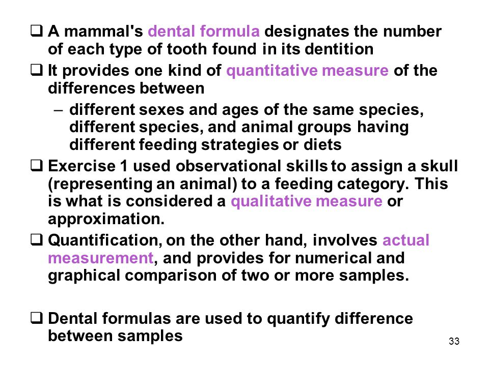 A mammal s dental formula designates the number of each type of tooth found in its dentition