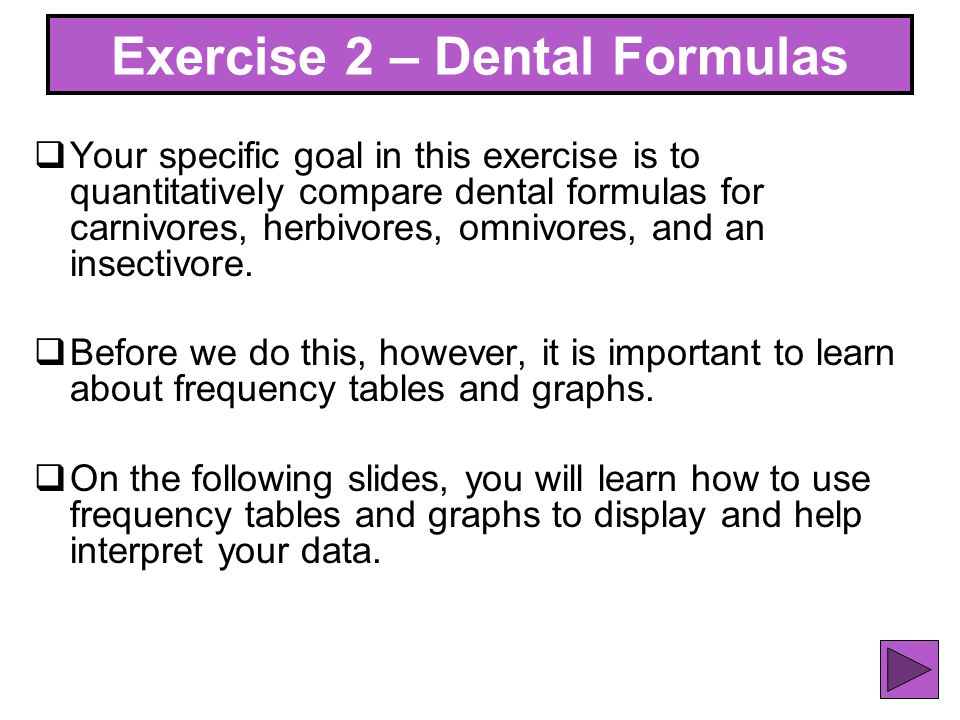 Exercise 2 – Dental Formulas