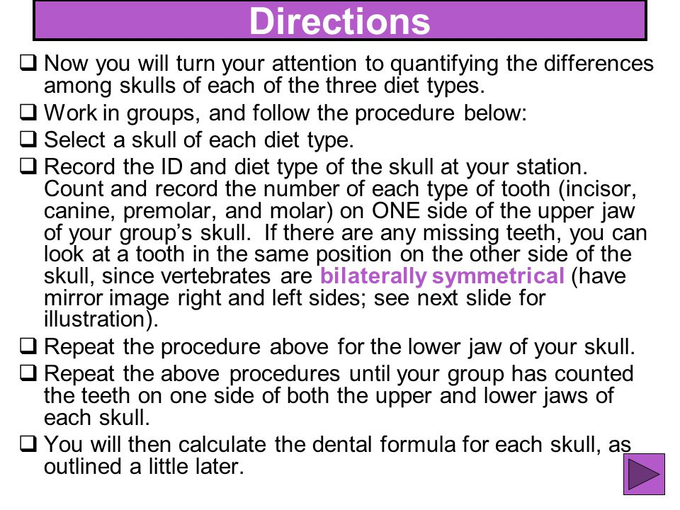 Directions Now you will turn your attention to quantifying the differences among skulls of each of the three diet types.