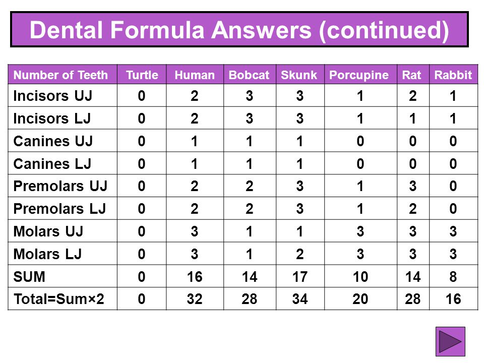 Dental Formula Answers (continued)