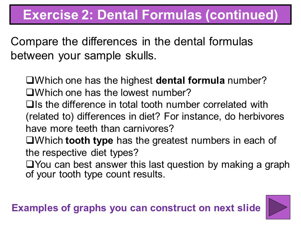 Exercise 2: Dental Formulas (continued)
