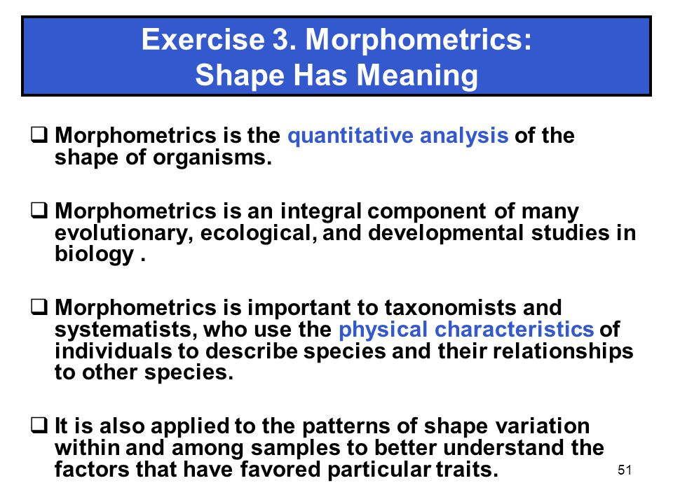 Exercise 3. Morphometrics: Shape Has Meaning
