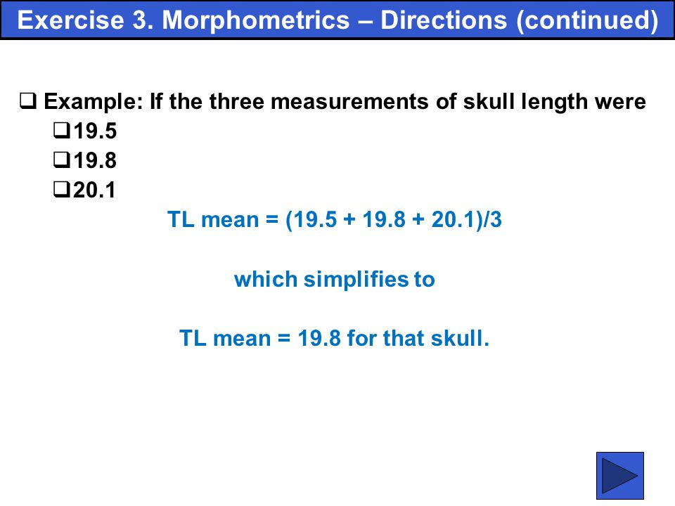 Exercise 3. Morphometrics – Directions (continued)