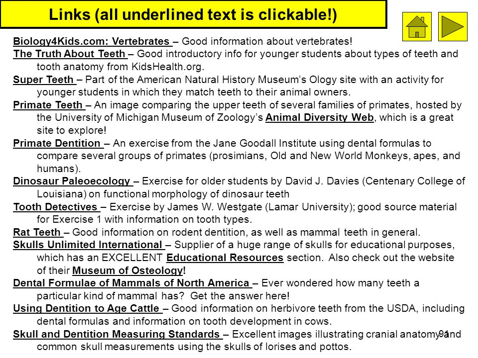 Links (all underlined text is clickable!)
