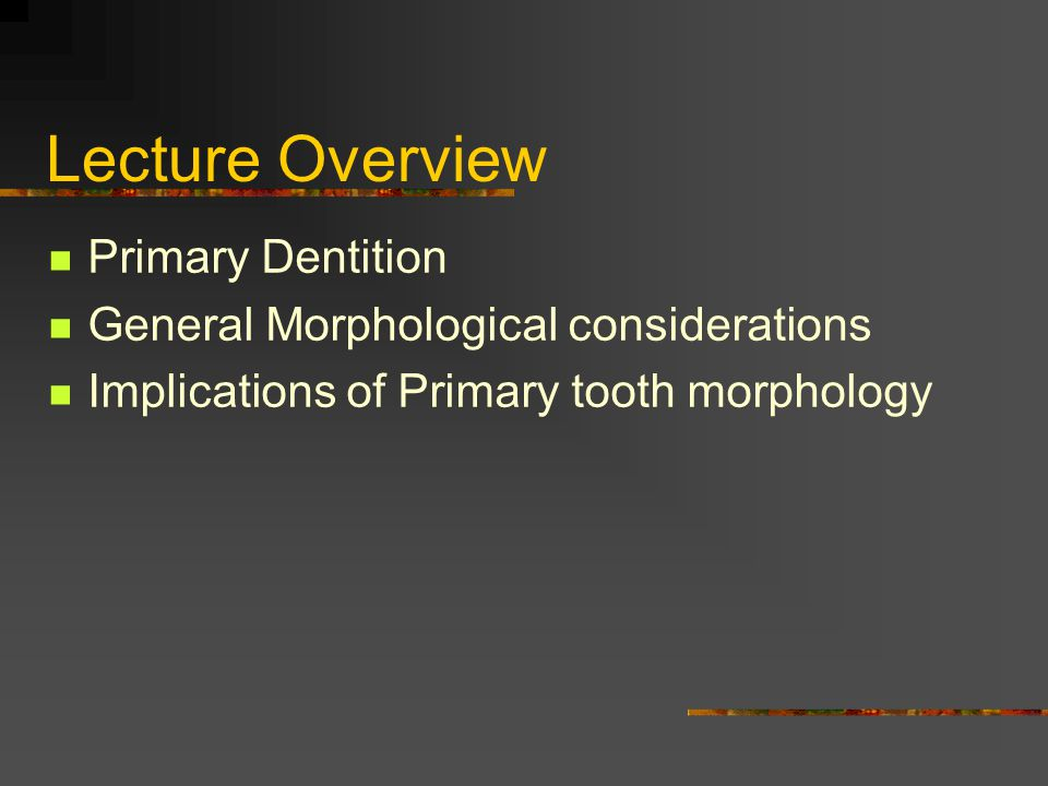 Lecture Overview Primary Dentition