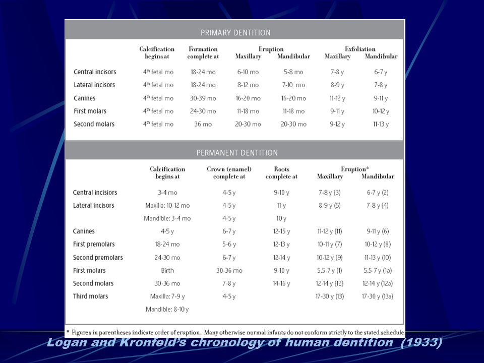 Logan and Kronfeld's chronology of human dentition (1933)