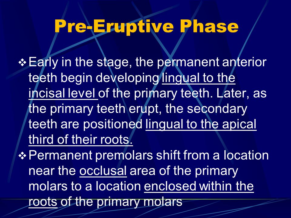 Pre-Eruptive Phase