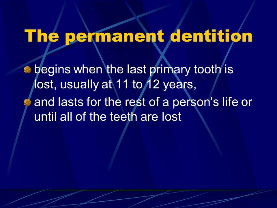 The permanent dentition