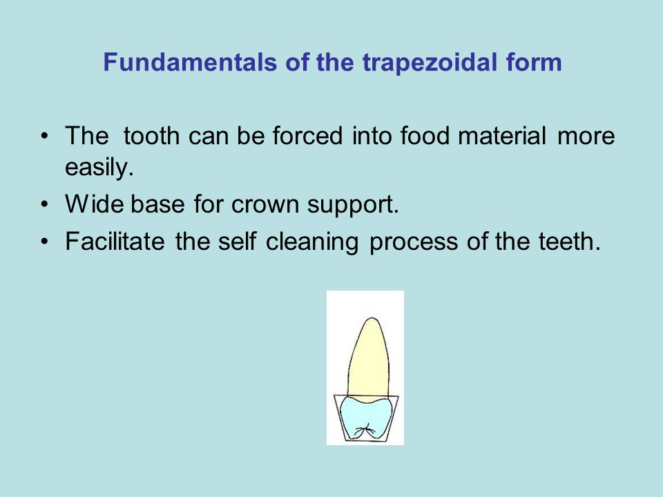 Fundamentals of the trapezoidal form