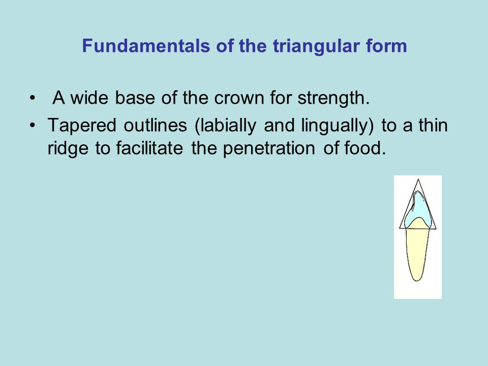 Fundamentals of the triangular form