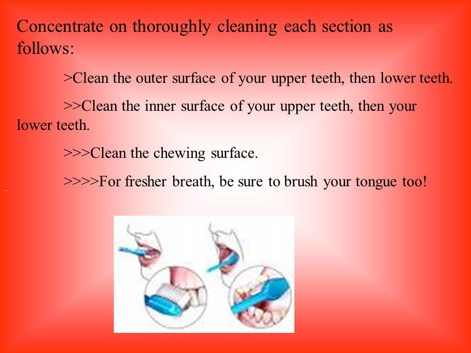 Concentrate on thoroughly cleaning each section as follows: