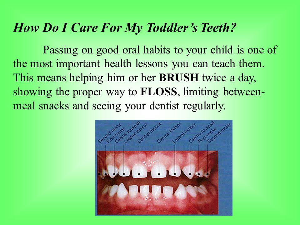 How Do I Care For My Toddler's Teeth