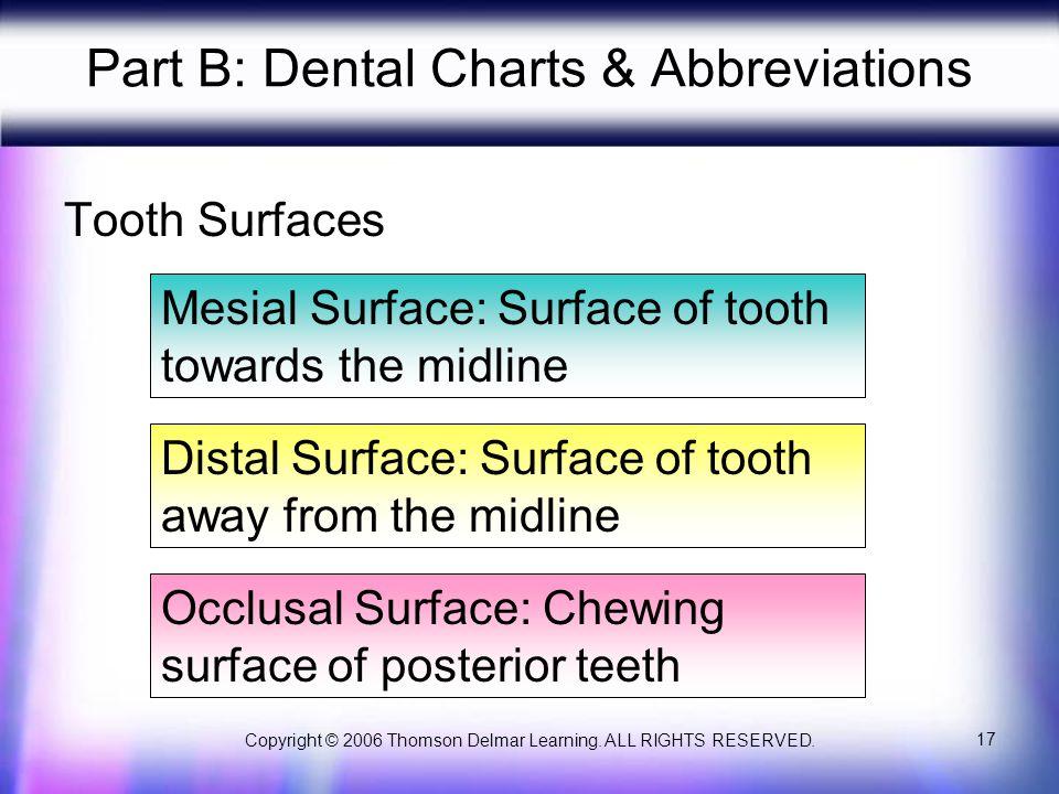 Part B: Dental Charts & Abbreviations
