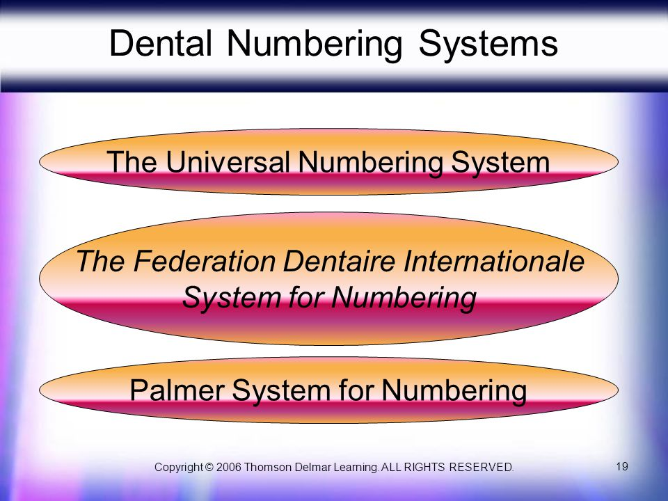 Dental Numbering Systems