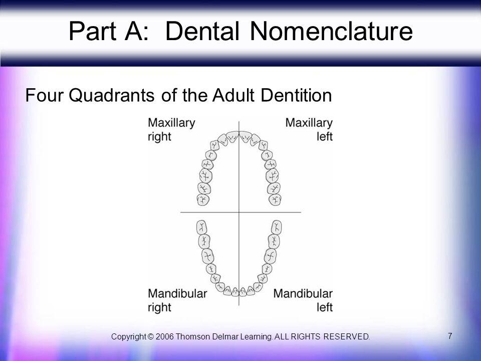 Part A: Dental Nomenclature