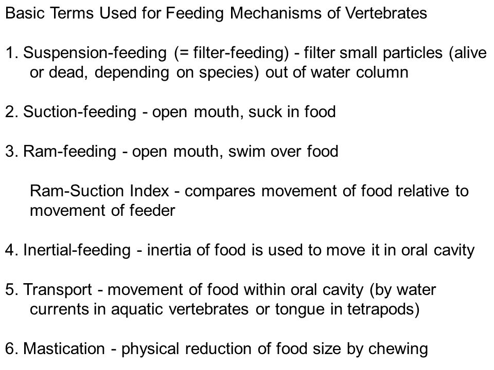 Basic Terms Used for Feeding Mechanisms of Vertebrates