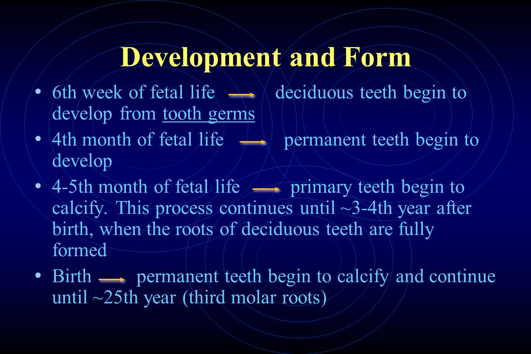 Development and Form 6th week of fetal life deciduous teeth begin to develop from tooth germs.