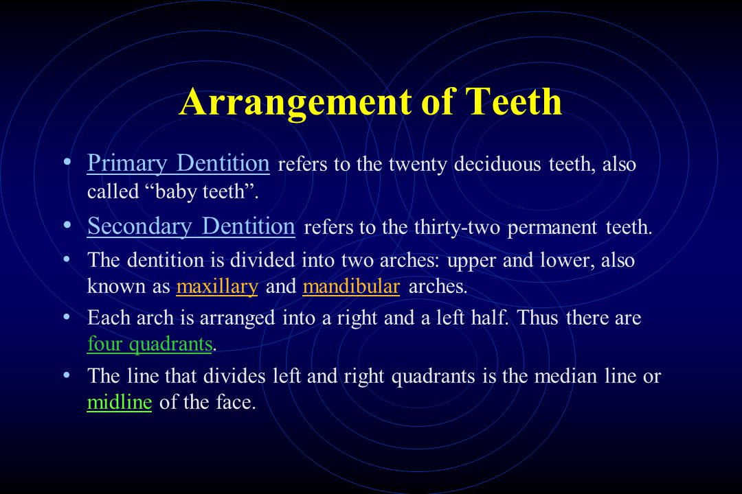 Arrangement of Teeth Primary Dentition refers to the twenty deciduous teeth, also called baby teeth .