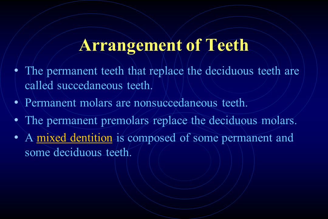 Arrangement of Teeth The permanent teeth that replace the deciduous teeth are called succedaneous teeth.