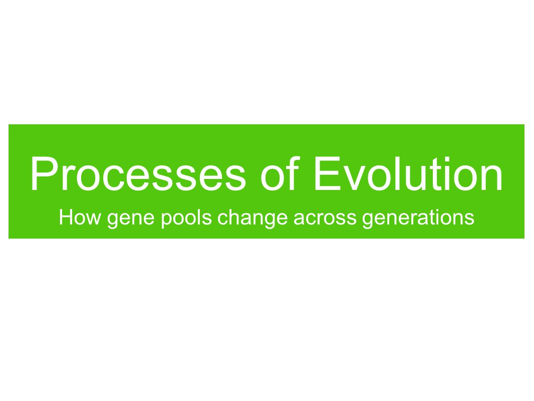 Processes of Evolution