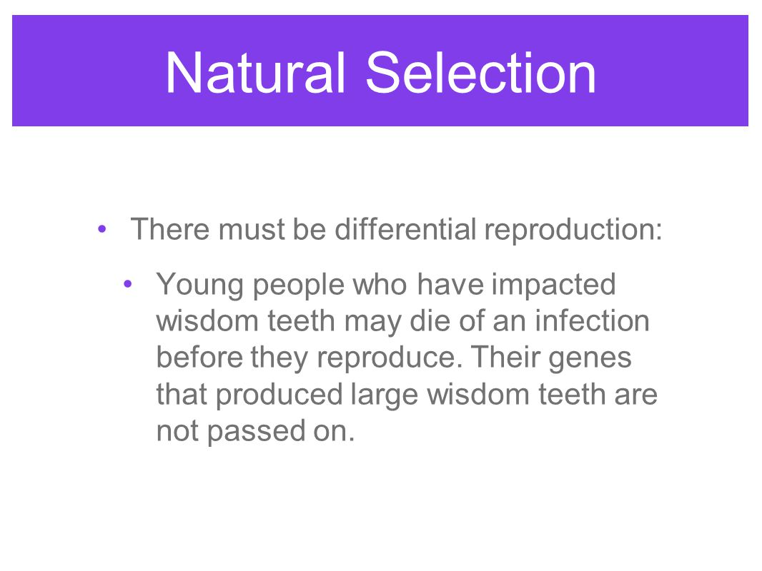 Natural Selection There must be differential reproduction: