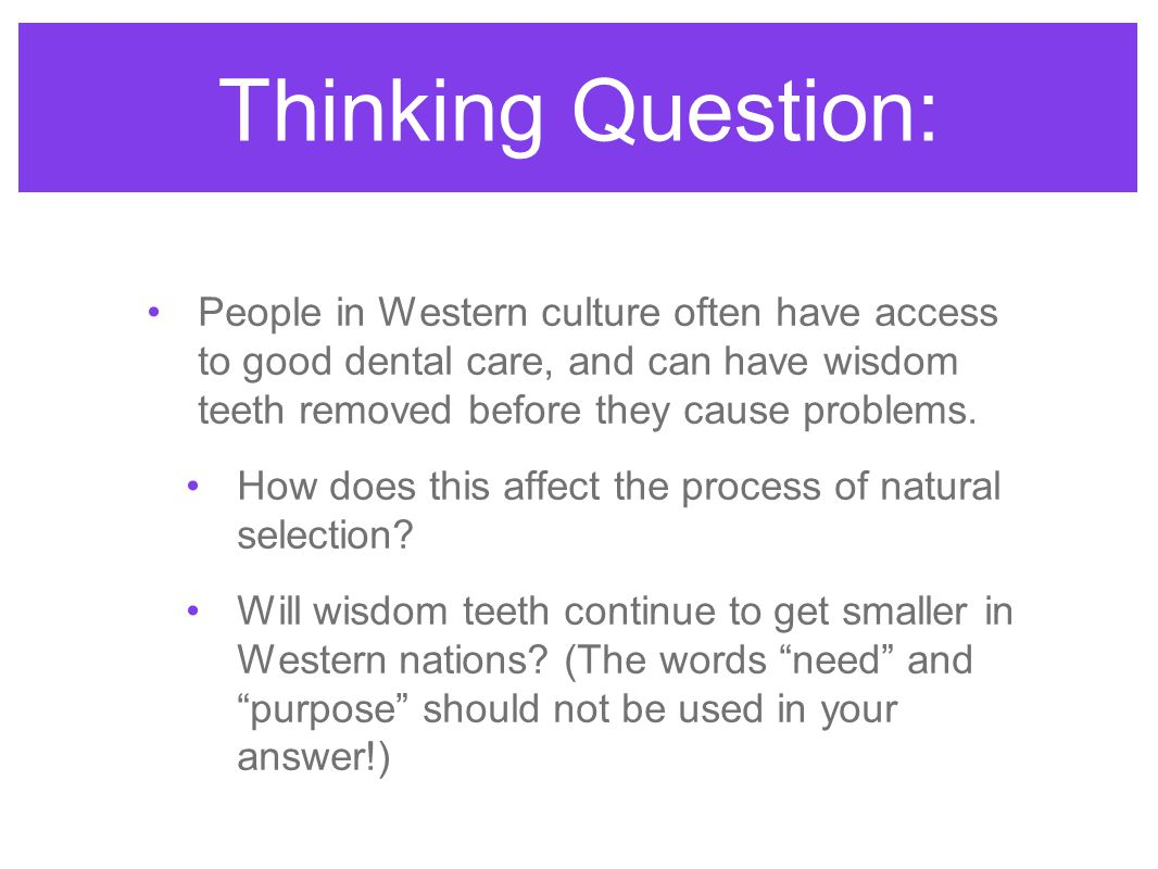 Thinking Question: People in Western culture often have access to good dental care, and can have wisdom teeth removed before they cause problems.