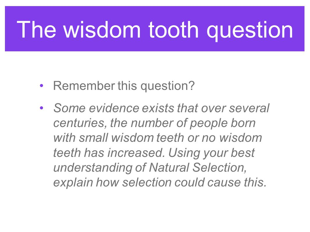 The wisdom tooth question