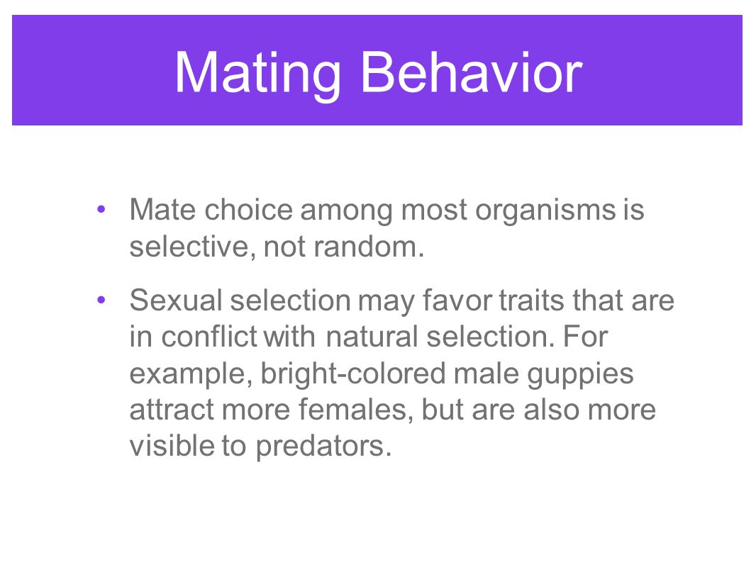 Mating Behavior Mate choice among most organisms is selective, not random.
