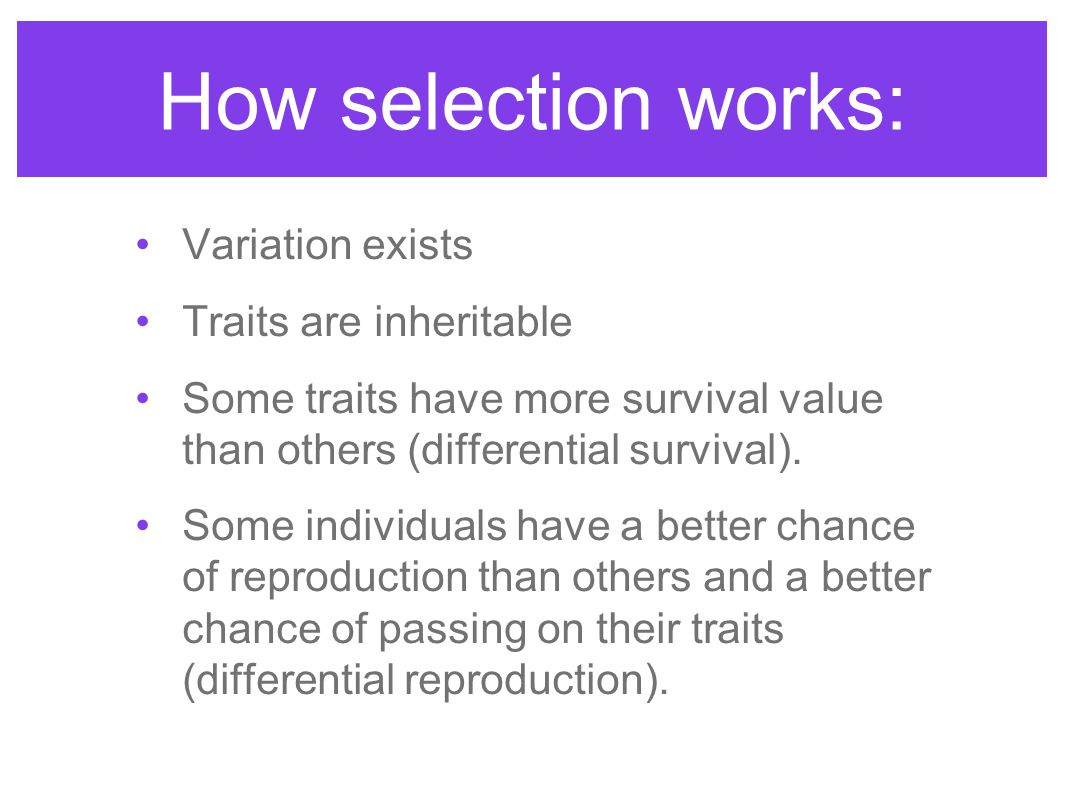 How selection works: Variation exists Traits are inheritable