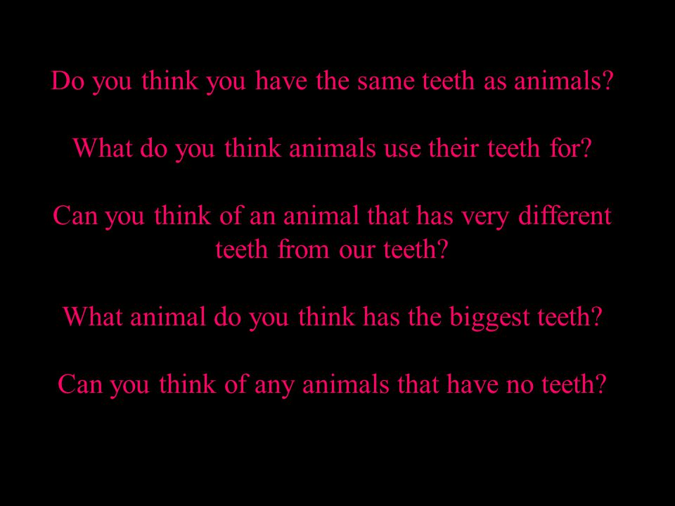 Do you think you have the same teeth as animals
