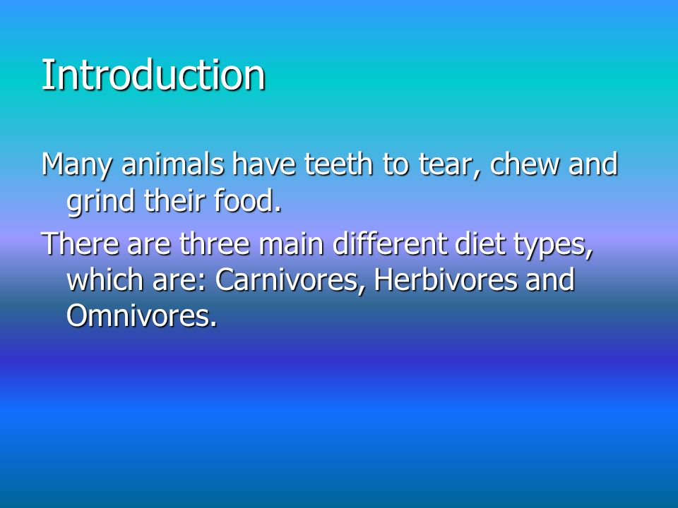 Introduction Many animals have teeth to tear, chew and grind their food.