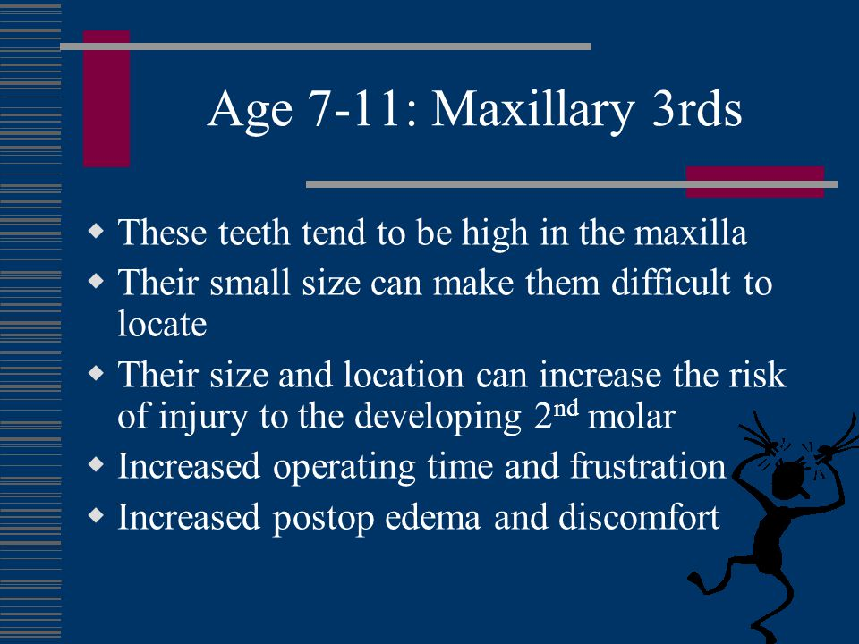 Age 7-11: Maxillary 3rds These teeth tend to be high in the maxilla