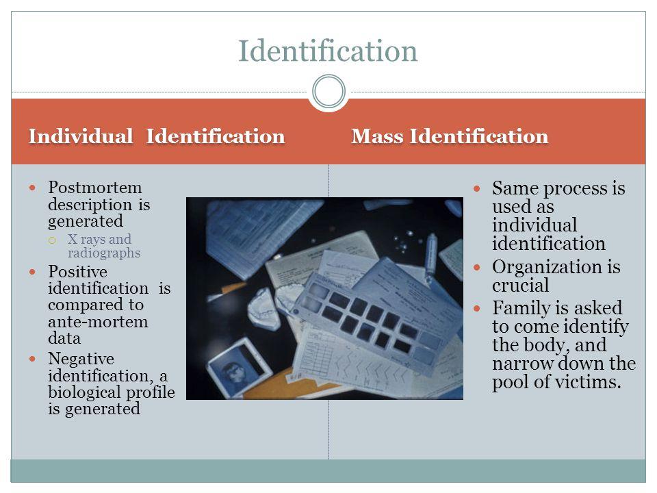 Identification Individual Identification Mass Identification