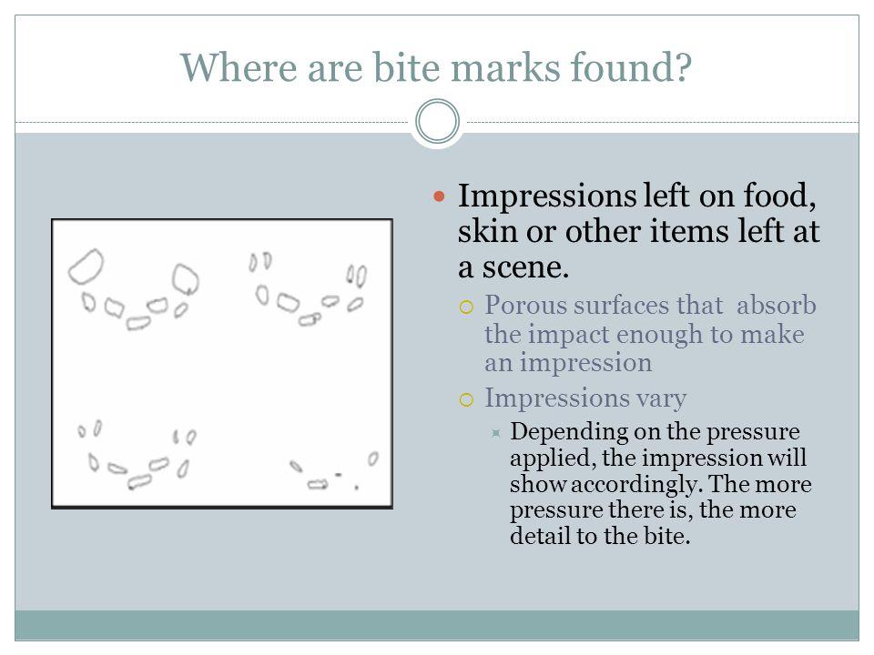 Where are bite marks found