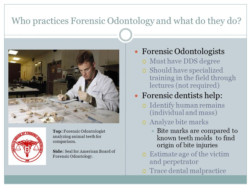Who practices Forensic Odontology and what do they do